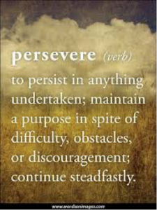 PersevereVerb