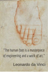 FootEngineering